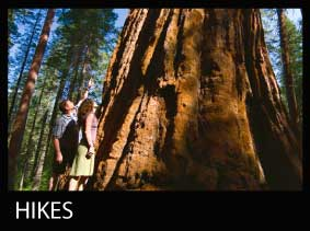 HIKES-TILE
